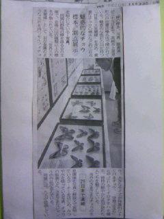 蝶の標本 写真 版画展地元紙上毛新聞 大きかく紹介