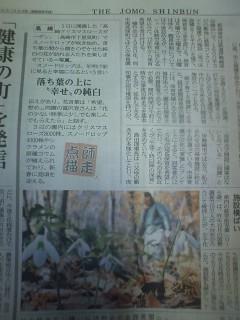 上毛新聞トップ 高崎クリスマスローズガーデン
